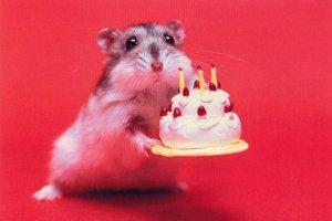 Happy-Birthday-17
